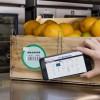 Walmart, JD.com, IBM и Tsinghua University собрались следить за качеством продуктов в Китае с помощью технологии блокчейн