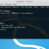 Ещё раз об OpenSSL
