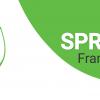 Spring: вопросы к собеседованию
