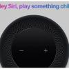 Apple ищет новых специалистов для работы над Siri