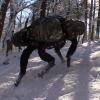 Вспоминаем легенду: как устроен BigDog от Boston Dynamics