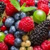 В борьбе с раком следует использовать дикие ягоды