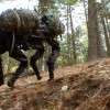 Как Boston Dynamics сделала BigDog автономным
