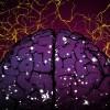 Когнитивные тренировки: «апгрейд» памяти и мышления