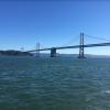 Стартапы, чат-боты, Кремниевая долина. Интервью с российскими разработчиками в Сан-Франциско