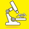 Поведение машин необходимо сделать научной дисциплиной
