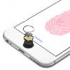 Apple оштрафовали из-за «ошибки 53»