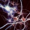 Фотонная искусственная нейронная сеть