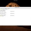 Настройка UFW в Ubuntu Server 16.04 на примере BigBlueButton