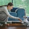 Робопёс Sony Aibo поступит в магазины США в сентябре