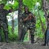 Мир в Колумбии угрожает местной природе