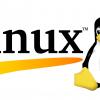 Изучаем процессы в Linux