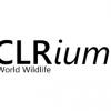 Встреча .NET сообщества на CLRium #4 + онлайн