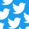 Twitter потерял 9 млн пользователей, но компания стала более прибыльной