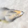 Роскосмос установил причину аварии «Союза-ФГ»
