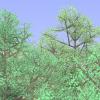 Как вырастить лес на Actionscript3-Flash в несколько* строк кода