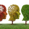 Клинические испытания показали уменьшение прогрессии болезни Альцгеймера более чем наполовину