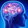 Первые пациенты получили клеточную терапию болезни Паркинсона