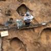 В Подмосковье обнаружили череп мамонта с кладом внутри