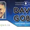 Интервью с Дэвидом Гобелем