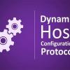 Собственный DHCP-сервер силами bash