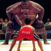 Пробы и ошибки при выборе HTTP Reverse Proxy