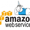 Searching for errors in the Amazon Web Services SDK source code for .NET
