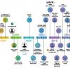 GOSINT — open source решение для управления индикаторами компрометации (IoC)