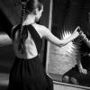 Создадут ли параллельные зеркала бесконечное количество отражений?
