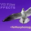 Эффекты фильтров SVG. Часть 2. Контурный текст при помощи feMorphology