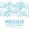 Знакомимся с микросервисным фреймворком Moleculer