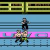Неизданную игру для NES обнаружили спустя 30 лет