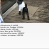 Определяем породу собаки: полный цикл разработки, от нейросети на Питоне до приложения на Google Play