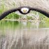 Потрясающая фотография орла взорвала интернет