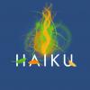 Мой первый день с Haiku: она неожиданно хороша