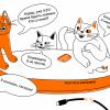 Кот Шрёдингера без коробки: проблема консенсуса в распределённых системах