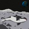 От Белки и Стрелки до водяных медведей: какие твари побывали в космосе