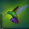 Huawei начала устанавливать Deepin Linux вместо Windows10 на ноутбуки