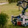 Ученые разработали робота-садовника