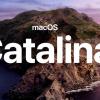 Десктопная версия Twitter в macOS Catalina игнорирует b, l, m, r и t при введении пароля