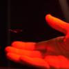 Учёные представили устройство, которое создаёт голограммы при помощи ультразвука и шарика из полистирола
