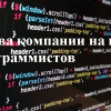 Права компании на код программистов