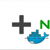 SSL сертификат для Docker web-app