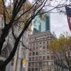 Плюсы и минусы ведения бизнеса в США: впечатления после трех лет развития двух компаний