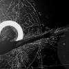 Ускорение дисковой подсистемы Qemu KVM в Linux