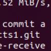 Блокируем заливку приватных ключей, архивов, больших файлов и не только в Gitlab CE