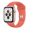 Справочная — Apple Watch Series6 спульсоксиметром: чтоэто идля чего нужно