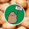 Жизнь замечательной картошки и современные технологии