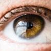 Иди и смотри: ученые научились перепрограммировать зрение