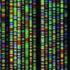 Система хранения данных на основе ДНК: реально ли это и как работает?